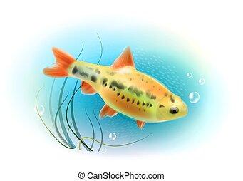 Hermosos peces en el mar. Pescado de acuario. Mundo subterráneo. Ilustración realista.