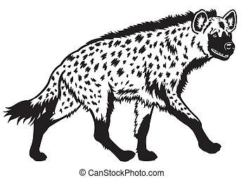 Hiena manchada de blanco negro