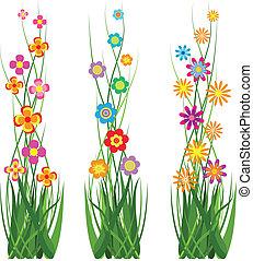 Hierba de colección y flores