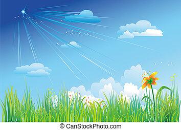 Hierba en un fondo de cielo azul