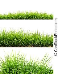 Hierba fresca verde primaveral