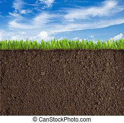 Hierba, hierba y fondo del cielo
