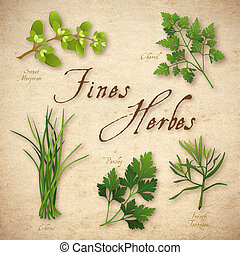 hierba, multas, herbes, mezcla, francés