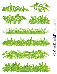 Hierba tropical exótica y plantas detalladas siluetas de ilustración de paisajes, recolección de vectores de fondo, concepto verde