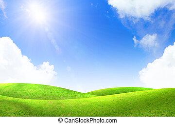 Hierba verde con cielo azul