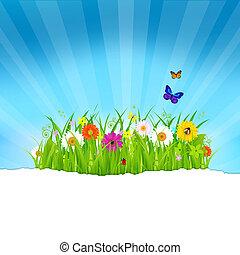 Hierba verde con flores y papel