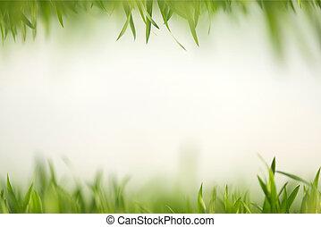 Hierba verde en composición artística