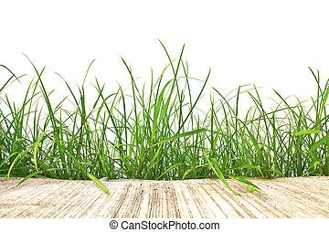 Hierba verde primaveral y camino de cemento aislados en el fondo blanco.