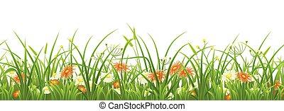 Hierba verde sin humedad con flores