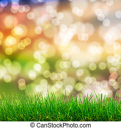 Hierba verde y luces bokeh