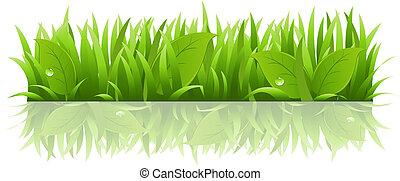 Hierba y hojas