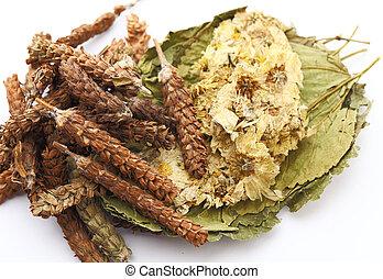 Hierbas chinas, ingrediente para el té