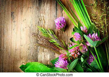 Hierbas de primavera sobre fondo de madera. Medicina de hierbas