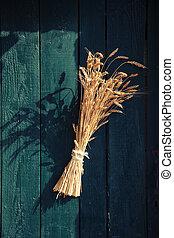 Hierbas en una puerta vintage