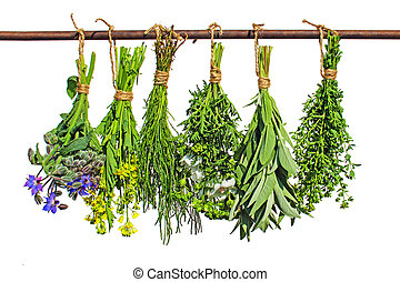 hierbas, medicinal