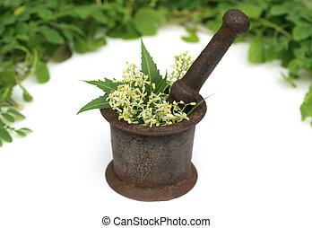 Hierbas medicinales en un mortero vintage
