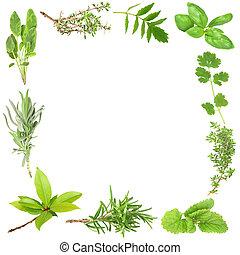 hierbas, orgánico