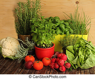 hierbas, vegetales, cosecha propia