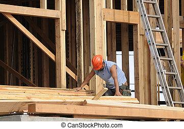 hispano, clasificación, carpintero, madera