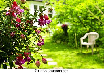 Hogar y jardín