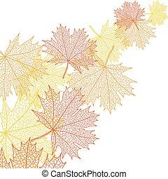 Hoja de macro de otoño de arce. Vector bacground