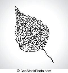 hoja, isolated., macro, árbol, negro, abedul