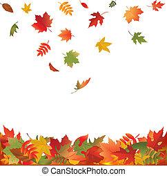 hojas, caer, otoño
