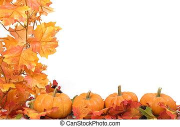 hojas, calabazas, otoño