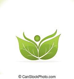 Hojas de logo de la naturaleza saludable