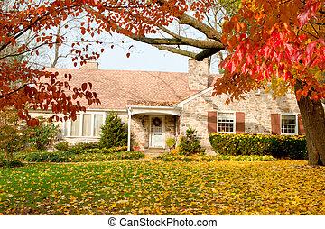 hojas, filadelfia, casa, otoño, otoño, árbol, amarillo
