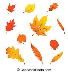 hojas, misceláneo, otoño