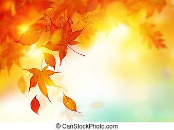 hojas, otoño, caer