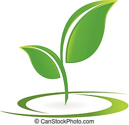 Hojas saludables vector de logo de la naturaleza