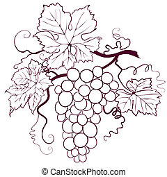 hojas, uvas