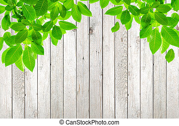 Hojas verdes en el fondo de madera