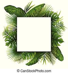 Hojas verdes tropicales con marco cuadrado blanco para textos aislados en fondo blanco