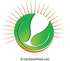 Hojas verdes y logo de vector solar
