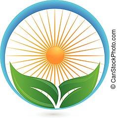 Hojas verdes y logotipo solar