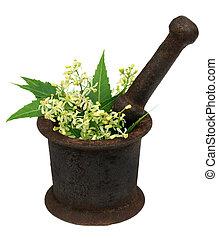 Hojas y flores en un mortero antiguo
