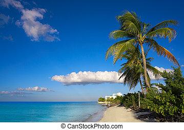 Holbox Island Palm Beach en México