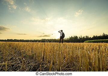 Hombre de negocios en el campo mirando a la distancia
