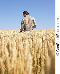 Hombre en el campo de trigo