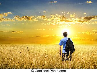 Hombre en la pradera de trigo amarillo.