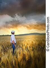 Hombre parado en un campo de trigo