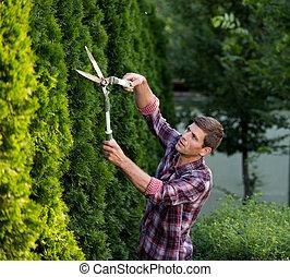 Hombre podando arbustos en el jardín
