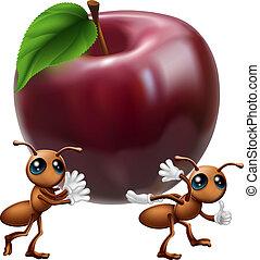 Hormigas llevando una gran manzana