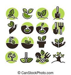 horticultura, plantación, conjunto, jardinería, iconos, árbol, vector, verde