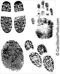 huellas digitales, zapato, handprints, impresiones