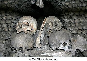 huesos, 2, cráneos, humano