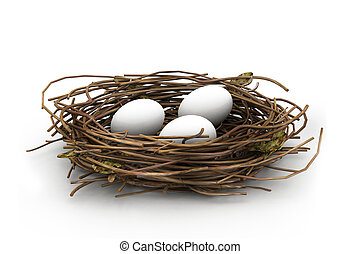 Huevo y nido